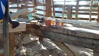 Next step is carpenter