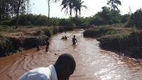 Children swimming on the river Okame, near Busia, Uganda