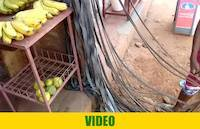 Rubber strings for gold washing sluice