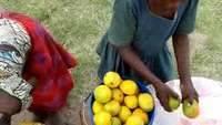 Children selling Mango in Tanzania, around Geita Gold Mine on the road to Mwanza