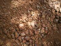 Gold Prospecting - Auriferous Drifts