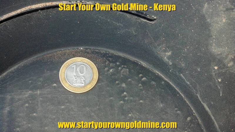 Coin in the gold pan along gold particles