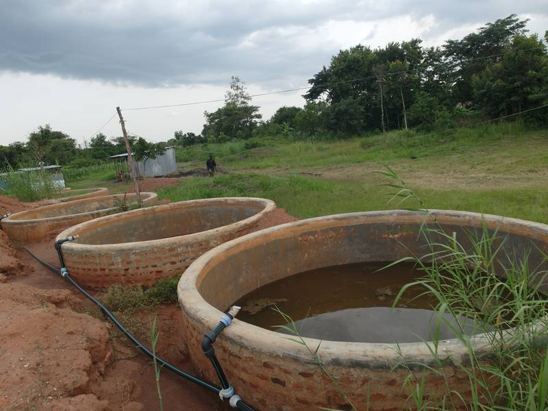 Gold cyanidation tanks