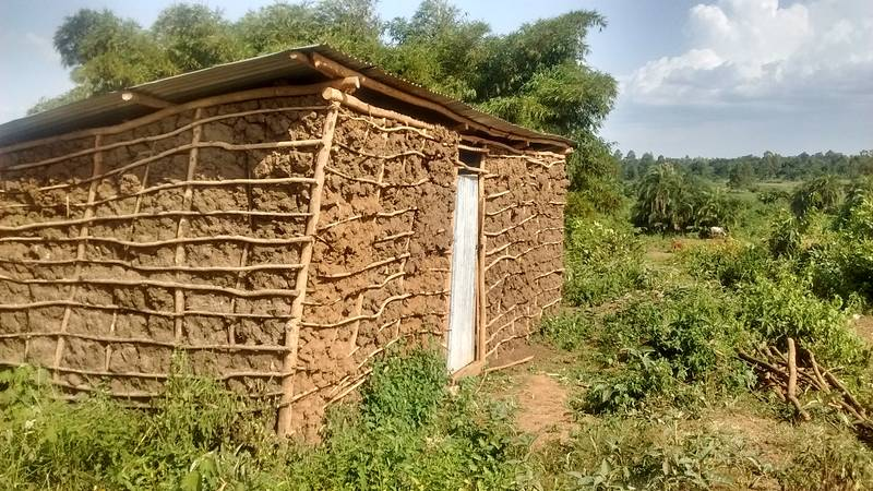 Mud building on the site