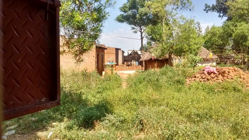 The view from our new base