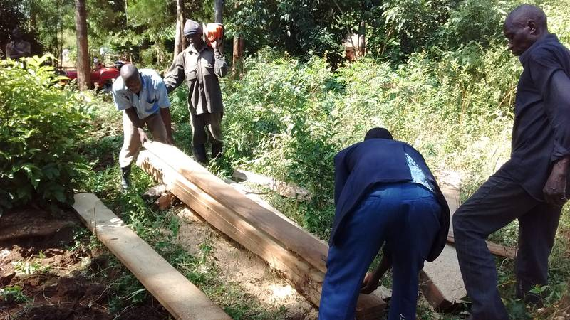 Cutting timber in the forest