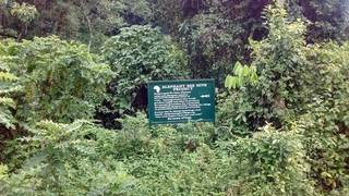The Elephant Bee Hive Project in Katojo, Rubuguri, district of Kisoro, Uganda