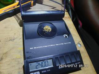 2.4 grams of natural gold nuggets on the balance scale